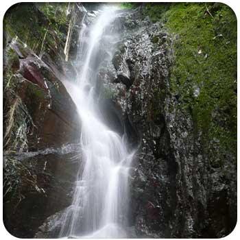 Lugares de interes Parque Nacional Henri Pittier 02